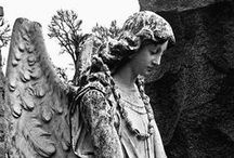 angelstone / In stone, marble and bronze, man-made heavenly beings reflecting human emotions and granting solace to human hope