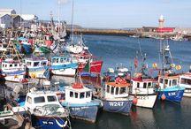 Ireland / Sailed in a catamaran from Skerries, south along the Irish coast.