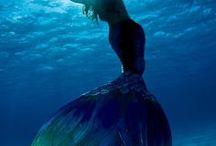 sirens of the sea / living mermaids