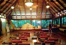 Yoga in Costa Rica- Nosara Yoga Institute. / Picture yourself learning yoga in nature's nurturing environment in magnificent Nosara, Costa Rica