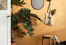 interior | wall colors