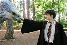 Potter.. / Yes... even I love Harry Potter