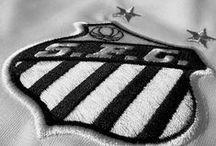 Santos Futebol Clube / @Santos