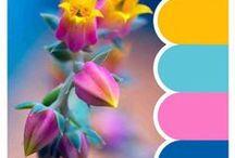 Inspira-color / Grupos de color que inspiran!