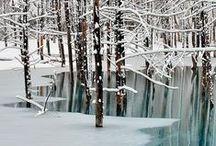 Stunning snow beaty