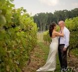 A Winery Wedding / A beautiful summer wedding at Taylor Brooke Winery. Wedding Planner : Elegant Aura