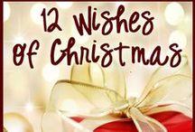 DC Christmas Wish List 2013 / by Congressman Stephen Fincher