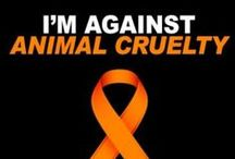 """HUMANITY✿No to animal cruelty ! - [Adults only +21] / Welcome! You are all cordially invited to collaborate on this board. If you follow me and write simply """"Add me""""on one of my pins, ONLY THERE : https://www.pinterest.com/hardysCorner7/last-minute/ , I'll send you an invitation, as soon as possible . Thanks to all contributors and followers for making this an superb board! Contributing is not obliged... You are free to invite your friends. Here, no rule, other than those of Pinterest..  Admin✿Bernard :-)"""