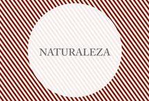 ♣ Naturaleza ♣ / Nos gusta la naturaleza, su simpleza, su perfección y belleza. Encontramos detalles que nos sorprenden siempre y también los llevamos a nuestras colecciones.