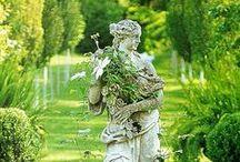 ogród inspiracje / garden