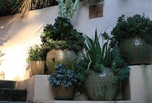 Outside In The Garden / Inspiration and ideas for gardening and landscaping outside the house