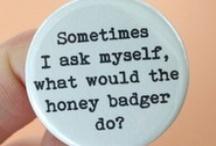 Honey Badger don't care! / by Karen Reece
