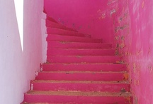 Neon Pink!  / by Nic Kraft