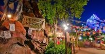 Animal Kingdom Tips + Tricks / Don't waste time and use these tips and tricks to totally conquer your time at Disney's Animal Kingdom.