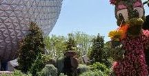 EPCOT Tips + Tricks / Use these tips to make the most out of your time spent at Epcot. So much to do and so much to see!