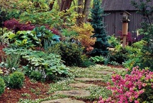 a garden is a friend you can visit anytime / by Lillirox