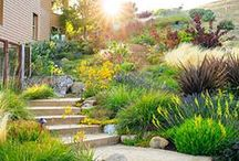 Water-Wise Landscapes / Give fresh ideas of water-wise landscapes