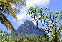 Travelling - Isle Mauritius / Travelling - Isle Mauritius