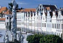 Czech Renaissance