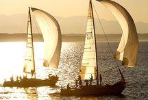 Yacht - jacht żaglowy / Yacht, wind, jacht