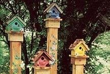 Bird Feeders & Houses