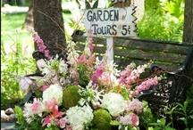 gardens / by Sally Hunt