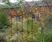 Glorious Gressenhall Gardens / Celebrating the beautiful gardens at Gressenhall.