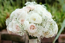 White, Cream & Green / Wedding Flowers by The Plant Shoppe Florist.  Mainly White, Cream & Green in color.