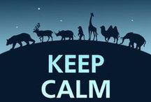 Keep Calm / Any Keep Calm posters connected to animals!