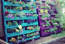 Creative Pallet Ideas