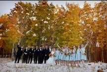 New Mexico Local Weddings / New Mexico local wedding resources