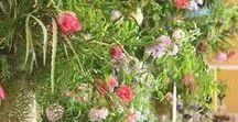 Woodland  Weddings / Beautiful Outdoor Inspired Weddings...