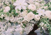 {whites+ pastels}