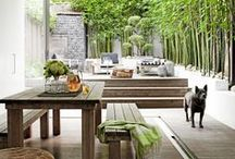 Outdoor Oasis / Modern + Simplicity + Low Maintenance!