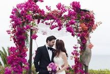 "Forever Fuchsia | Hot Pink Magenta Wedding / ""I believe in pink."" - Audrey Hepburn"