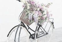 Bikes \ Bicycles / Vintage