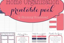 | Organization & Productivity |