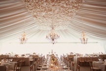 weddings!! :D