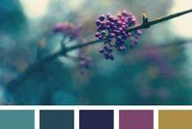 color palette | jewel tones / color inspirational on jewel tones, pink blue, ocher, aqua