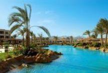 فندق ريجنسى بلازا, شرم الشيخ بمصر / يقع فى خليج النبق وعلى بُعد 5 دقائق من سوهو سكويز
