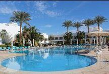فندق نوفوتيل دهب, شرم الشيخ بمصر / يقع فى دهب بمدينة شرم الشيخ