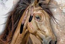 kresba koně