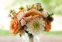 Ramos de novia / Algunos de los ramos de novia que más nos han gustado