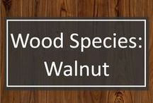 Wood Species: Walnut / Walnut is one of the most requested species for custom wide plank flooring at Shannon & Waterman.  Not only does walnut make for a gorgeous floor, it is highly durable and ages gracefully.