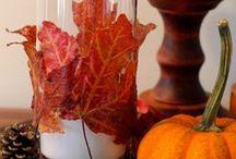 Fall, autumn / by Marji Roy