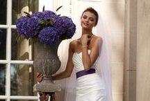 WEDDING: ATTIRE / by Rachael Renee