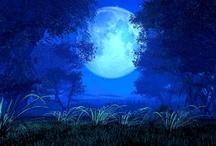 Moon / by Sandi Burgess