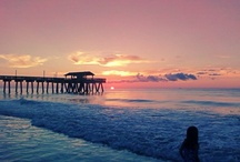 Beach Life / by Sandi Burgess