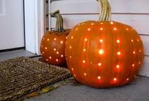 Pumpkin / by Sandi Burgess