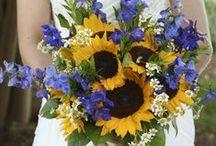 WEDDING: FLOWERS / by Rachael Renee